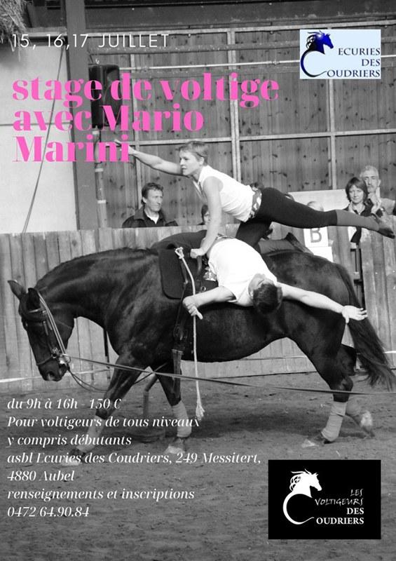 Stage voltige Mario Marini du 15 au 17 juillet